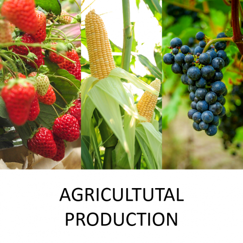 agro production