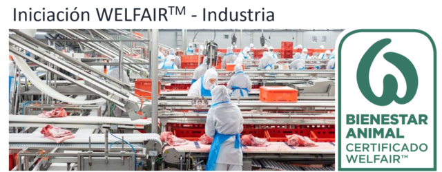 Iniciación WELFAIR Industria