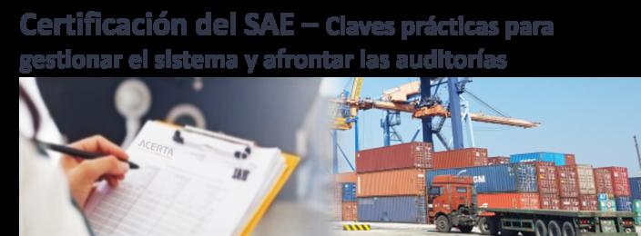 SAE - Claves prácticas para gestionar el sistema y afrontar las auditorías